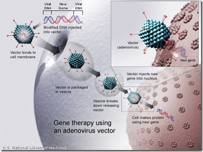 Diagram illustrating the process of gene therapy