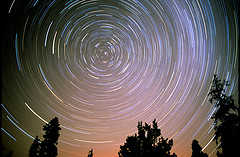 Time-lapse photo of star trails above trees