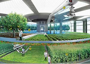 Vertical farming may save the city