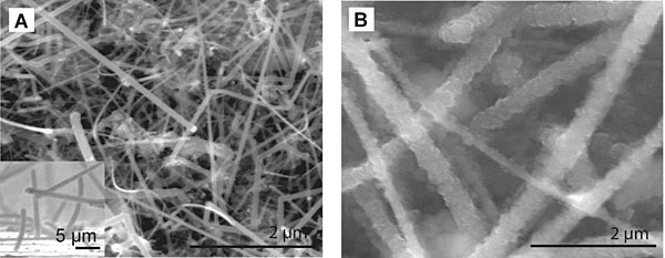 Nanowires are an exciting way to dramatically increase efficiency in exisiting silicon tech