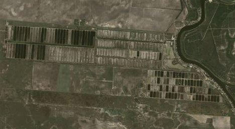 the new 1080 acre algae biofuel farm in Texas