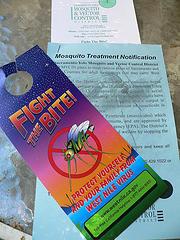 mosquito flyer