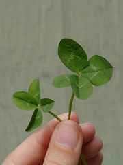 four_leaved_clover