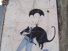 rat paratrooper, stencil graffiti