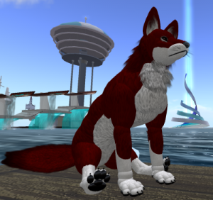 Stan Shackleton, Kim Stanley Robinson's Second Life coyote avatar