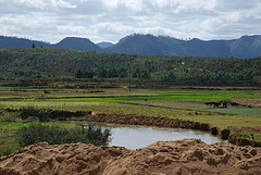 farm land in Madagascar