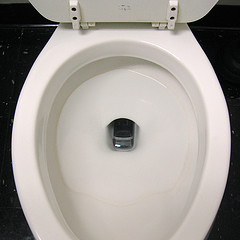 toilet bowl with mobile phone