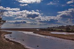 Otter Estuary, Devon, UK