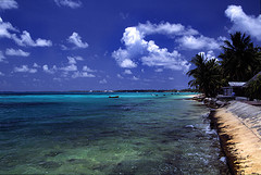 Tuvalu - here today, gone tomorrow?